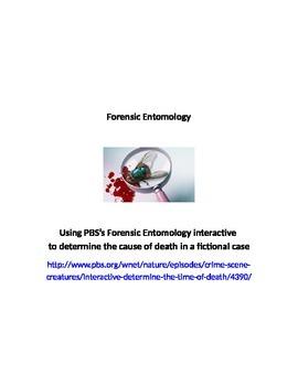 Forensic Entomology worksheet & key; insects & crime scene investigations