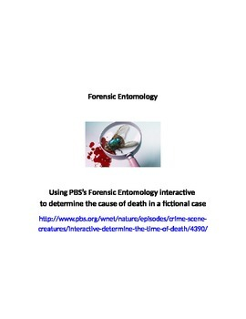 Forensic Entomology worksheet & key; insects & crime scene investigations