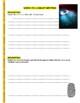 Forensic Files : Grave Evidence (video worksheet)