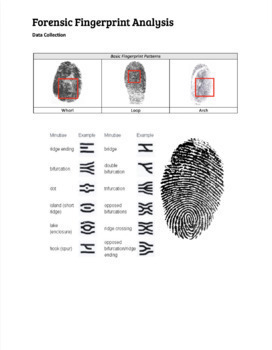 Forensic Fingerprint Analysis - GOOGLE VERSION