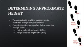 Forensic Footprint Analysis