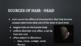 Forensic Hair Analysis - GOOGLE VERSION