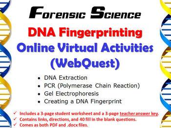 DNA Fingerprinting Online Virtual Activities (WebQuest)
