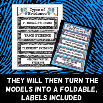 Forensic Science Vocabulary - Foldable - Types of Evidence
