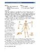 Forensics Anthropology Lab Unit 14.2: Classification of Human Bones