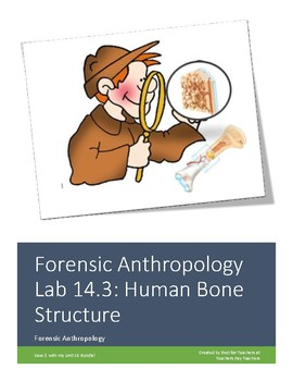 Forensics Anthropology Lab Unit 14 3 Human Bone Structure By Best For Teachers