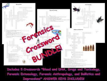 Forensics Crossword Bundle 2