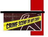 Forensics Unit Plan 3: The Crime Scene