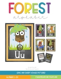 Forest-Camping Alphabet Line
