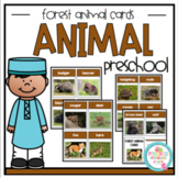 Forest Animal Cards with Real Pictures