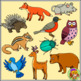 Forest Animal Clip Art – Color and B/w Woodland Animals