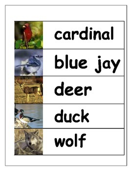 Forest Animal Word Cards