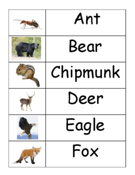 Forest Animal Word Wall Words