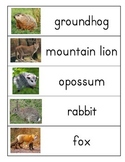 Forest Animal word wall
