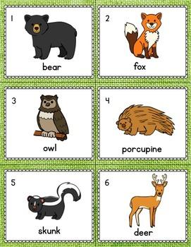 Forest Animals Kindergarten