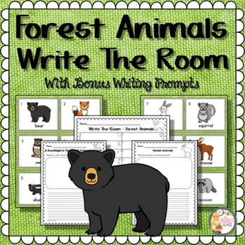 Forest Animals | Forest Animals Write The Room | Forest An