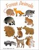 Forest Animals Children's Clipart