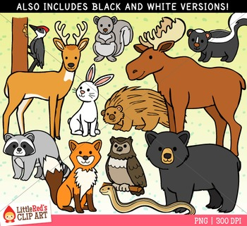 Forest Animals Clipart