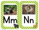 Forest Animals Decor Bundle