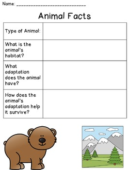 Forest Animals (Habitats and Adaptations)