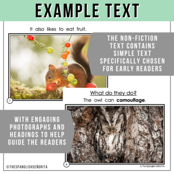 Forest Animals Non-Fiction Spanish Readers