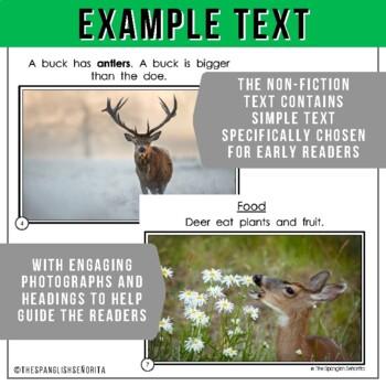 Forest Animals Non-Fiction Spanish Readers - El Ciervo  The Deer