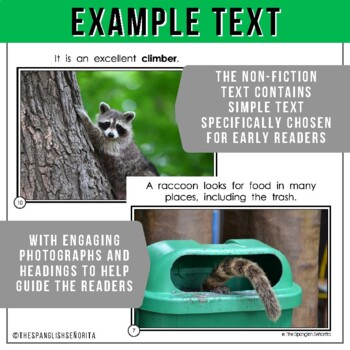 Forest Animals Non-Fiction Spanish Readers - El Mapache  The Raccoon
