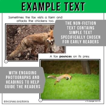 Forest Animals Non-Fiction Spanish Readers - El Zorro  The Fox