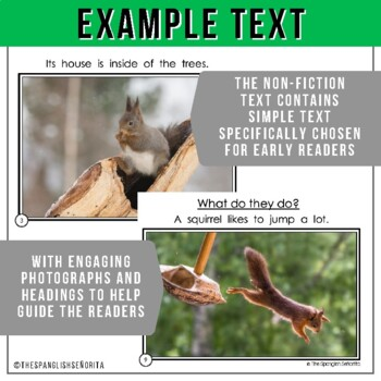 Forest Animals Non-Fiction Spanish Readers - La Ardilla  The Squirrel