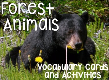 Forest Animals Vocabulary Cards and Activities