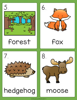 Forest Animals - Woodland Animals Write the Room