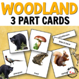 Forest Animals - Woodland Habitat 3 Part Cards