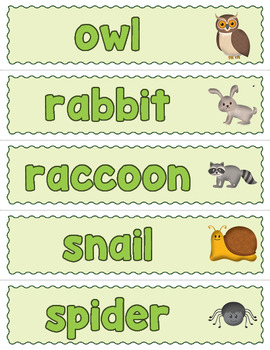 Forest Animals Word Wall (17 Slips)
