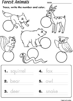 Forest Animals Worksheet by Maple