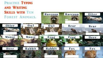 Forest Animals- a Typing or Writing Practice Activity