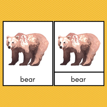 Forest Animals and Footprints Montessori 3-Part Cards