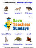 Forest Animals in French Worksheets, Games, Activities and Flash Cards