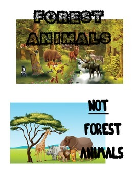 Forest Animals vs Non-Forest Animals picture sort