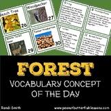 Forest Calendar Cards