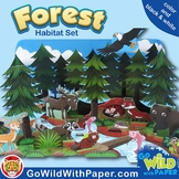 Forest Craft Activity   Coniferous Forest Habitat Diorama   Paper Model