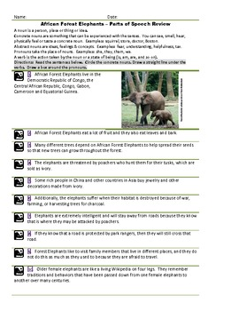 Forest Elephants:  Parts of Speech