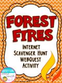 Forest Fires Internet Scavenger Hunt WebQuest Activity