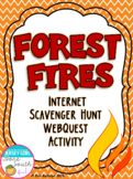 Forest Fires Internet Scavenger Hunt WebQuest Activity