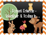 Forest Friends - Weather & Today is...