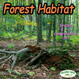 Forest Habitat (Forest Biome)