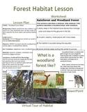 Forest Habitat Lesson Plan & Power Point
