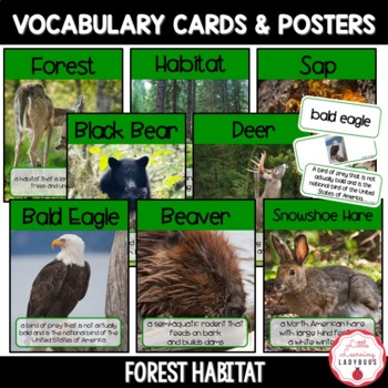 Forest Habitat Non-Fiction Resources {Close Reads & Informational Text}