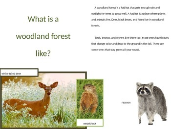 Forest Habitat Power Point