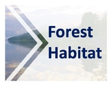 Forest Habitat PowerPoint-includes definitions and pictures of Forest Habitats.
