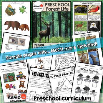 Forest Life - Weekly Preschool Curriculum Unit for Preschool, PreK or Homeschool